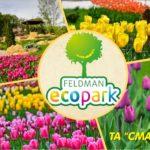 Парад тюльпанів в Єкопарку Фельдмана- 2, 3, 9 та 10 травня
