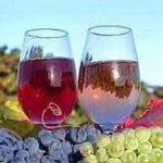 Одесса+Фестиваль вина в Молдове (4-7.10)- 2 дня