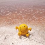 Арабатські терми, рожеве озеро, МОРЕ- (20.08-23.08)-3 дні